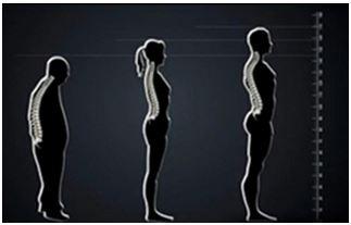 Advanced Massage Technology- Standard for Apex Massage Chairs.