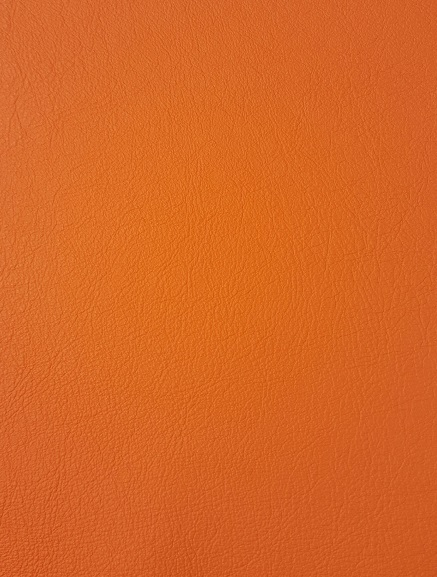 apricot-orange-paloma-swatch.jpg
