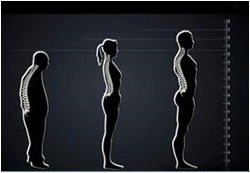 Back and Body Scan- Osaki Massage Technology