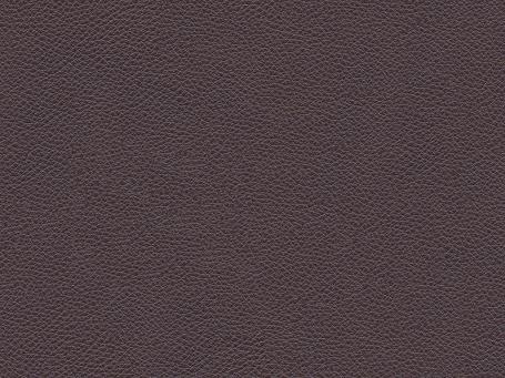 Dark Brown Royalin Leather 09522