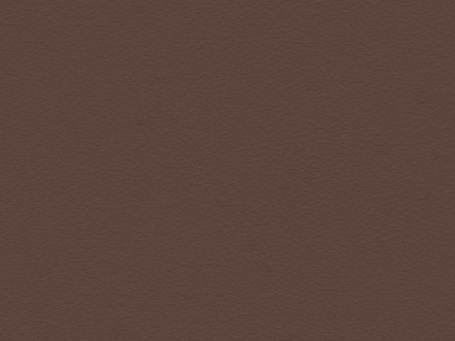 paloma-09488-chestnutpreviewlarge.jpg