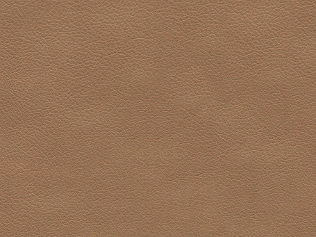 Taupe Paloma Leather 09484