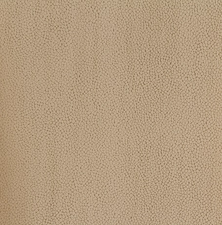 Terra Light Beige 981585 81